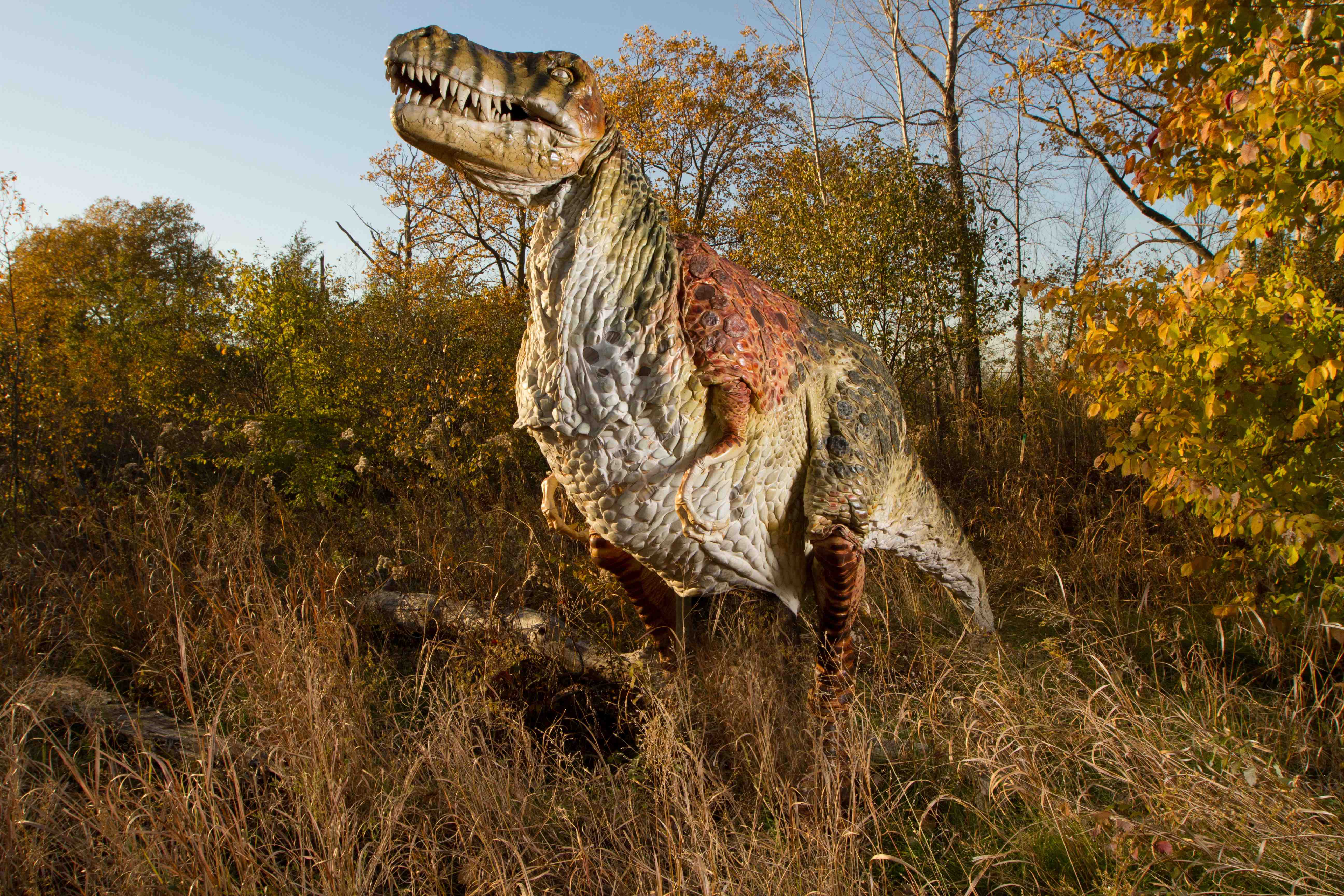Travel Back to Field Station: Dinosaurs   Mama One to Three
